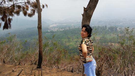 Callindra Hill