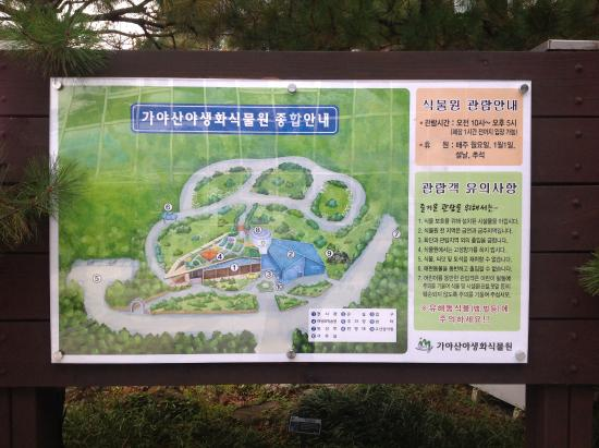 Seongju-gun South Korea  city pictures gallery : ... of Gayasan Wildflower Botanical Garden, Seongju gun TripAdvisor