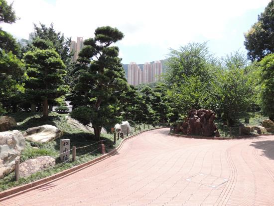 1 photo de jardin de nan lian hong kong tripadvisor for Jardin hong kong