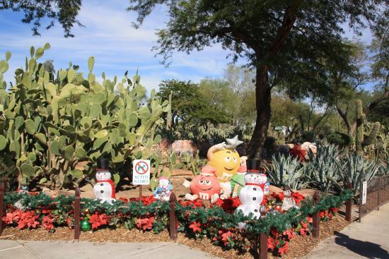 Ethel M Chocolates Factory And Cactus Garden: View Of Cactus Garden