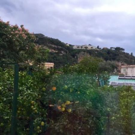 Hotel Mignon Meuble: View from our room