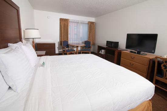 San Mateo SFO Airport Hotel : Single King Room