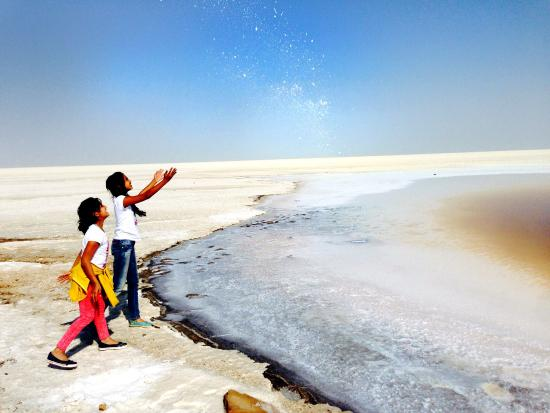 White Desert: At the Great Rann of Kutch