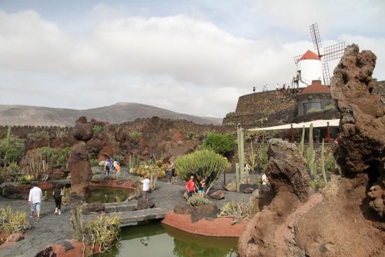 entree toilettes femmes photo de jardin de cactus With charming moulin en pierre pour jardin 8 lanzarote le jardin de cactus canaries espagne