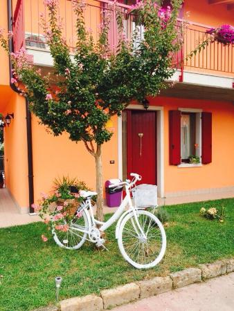 Villa Camporosso: giardino