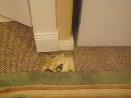 Cinema Suites Bed & Breakfast: unfinished floor / dirty rug