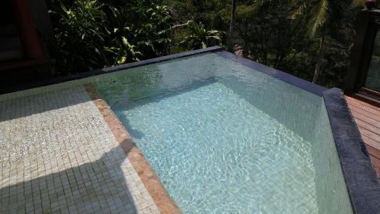 Kupu Kupu Barong Villas and Tree Spa: プール付のお部屋なので部屋の外も楽しい。