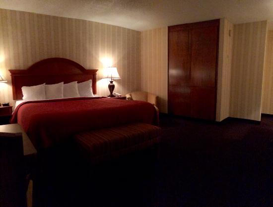 Quality Inn & Suites Conference Center : king bed