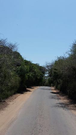 KwaZulu-Natal, Sydafrika: 20151111_111711_large.jpg