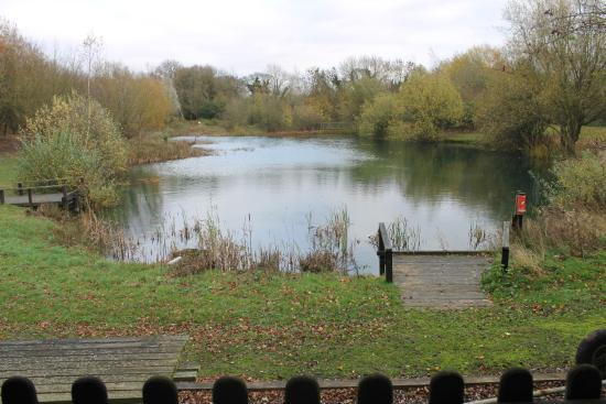 Great Fransham, UK: The lovely lake and gardens