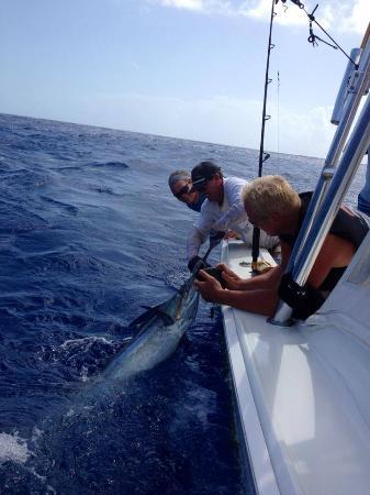 Hookie II Sportfishing Charters