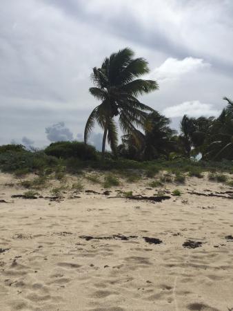 Simpson Bay, St-Martin/St Maarten: photo3.jpg