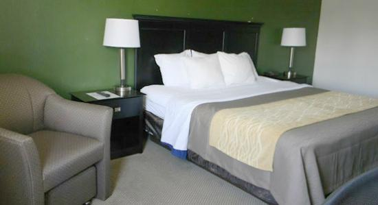 Boarders Inn and Suites by Cobblestone Munising: Single Queen Room