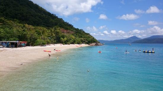 Fitzroy Island Queensland: Fitzroy Island Resort $144 ($̶1̶9̶8̶): 2018 Prices