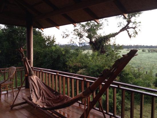 Kingfisher Ecolodge: photo2.jpg