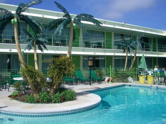Wildwood Crest, NJ: Pool Palms 1