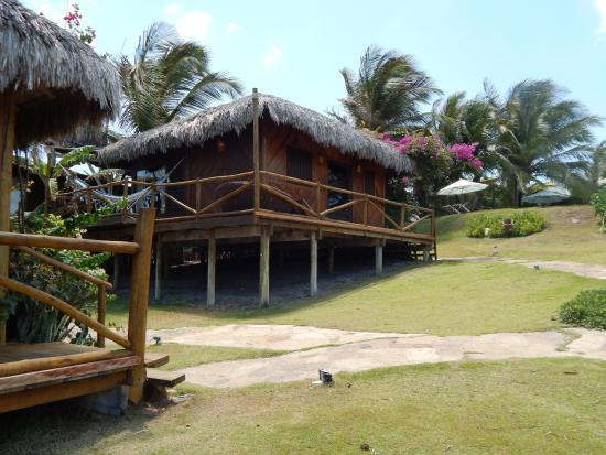 Entrance - VillaMango Beach Bungalows: 10