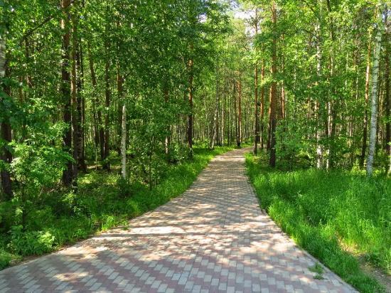 Park Kedrovy Log