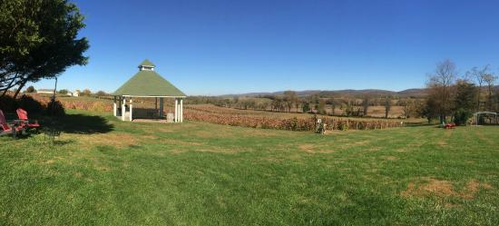 Veramar Vineyard: The lawn, tasting room and view of the Blue Ridge
