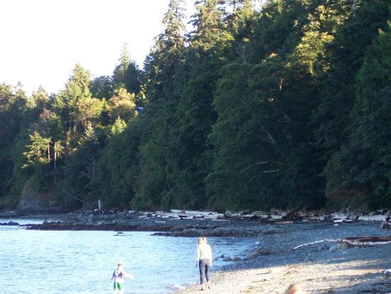 Nanaimo, Canada: Walks along the beach