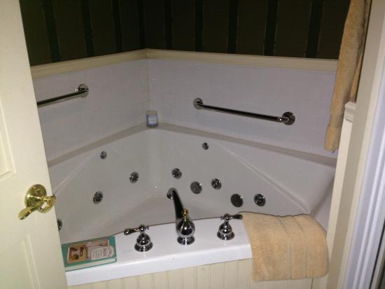 Berry Manor Inn: The tub