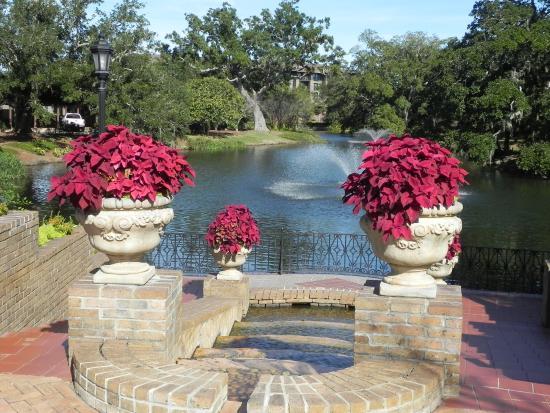 Grand Hotel Marriott Resort, Golf Club & Spa: Duck Pond, center of resort grounds