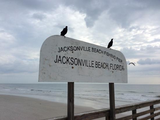 Jacksonville beach fl picture of jacksonville beach for Jacksonville fishing pier