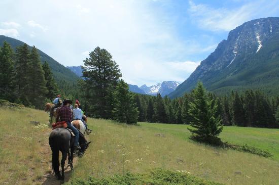 McLeod, MT: horseback to meadow