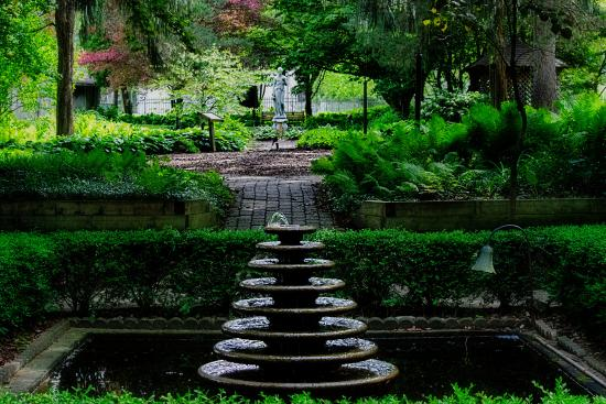 krider gardens, middlebury, ©David L Arment