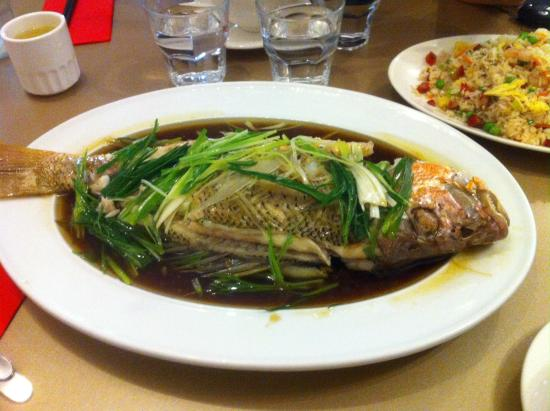 Hingston Chinese Restaurant & Take Away: Whole steamed golden snapper