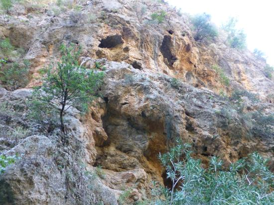 Sougia, اليونان: Irini Gorge