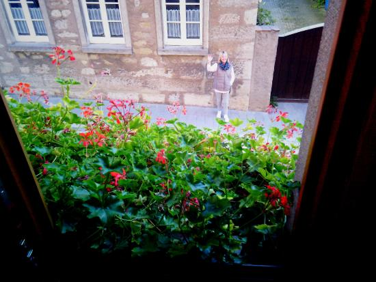 Pension Becker : from the windowbox
