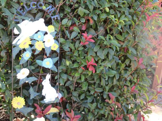 Conejo Valley Botanic Garden, Thousand Oaks, Ca