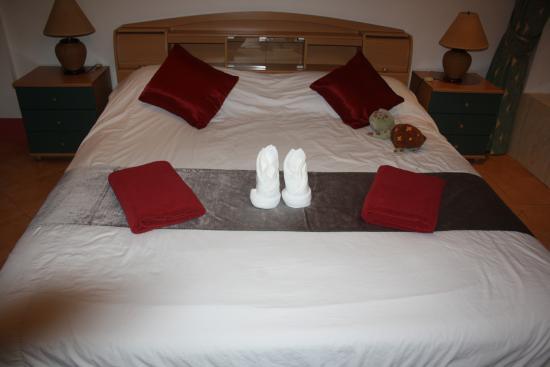 Aquarius Gay Guesthouse and Sauna: Bett