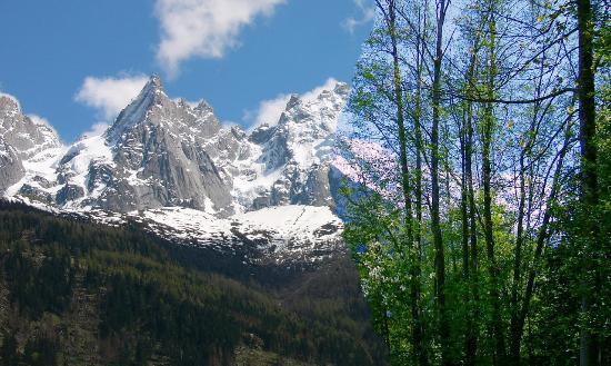 Le Paradis des Praz: 遊歩道からのモンブラン峰。