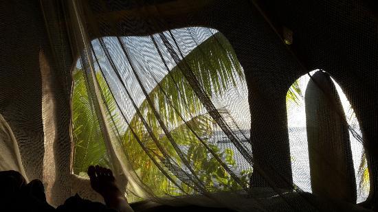 Tikehau Ninamu Resort: IMG-20150901-WA0004_large.jpg