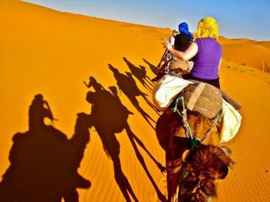 Haven La Chance Desert Hotel: camels trecking