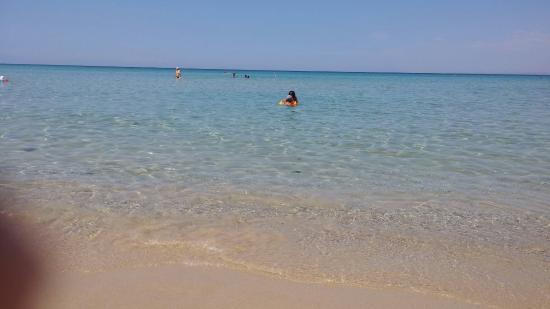 Sani Beach Hotel: Sani Beach Hotel