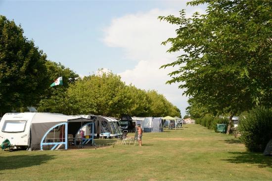 Camping Logis du Breuil : Emplacement au soleil / Sunny pitches