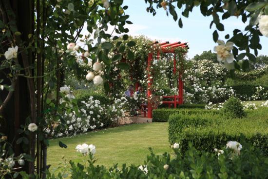 Le jardin blanc georges l v que picture of les jardins du manoir d eyrignac salignac - Jardins du manoir d eyrignac ...