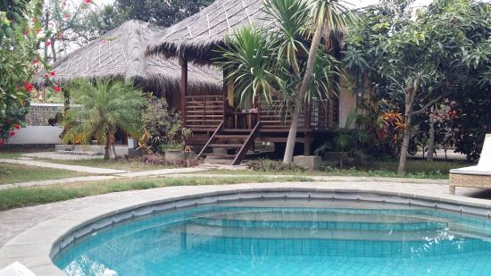 The pool and bungalow