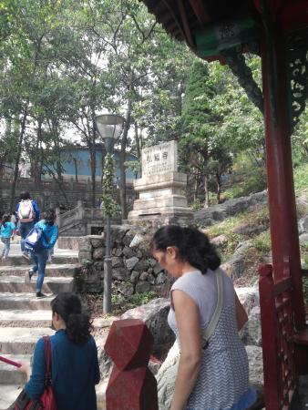 Hongfu Temple: 5
