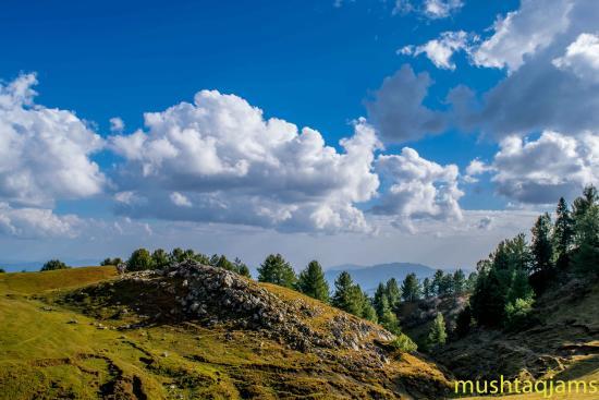 Mukshpuri Top