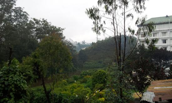 Archana Residency Munnar: View from room
