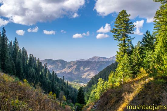 Nathia Gali, Pakistan: Scenic beauty on the track towards Mukshpuri Top