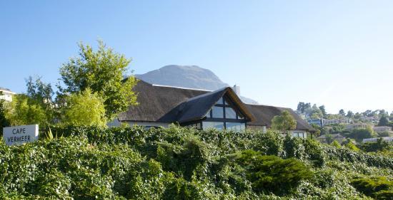 Cape Vermeer: At the slopes of Helderberg