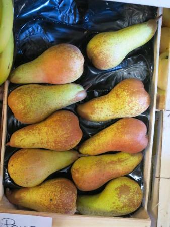 Vicchio, İtalya: Pears