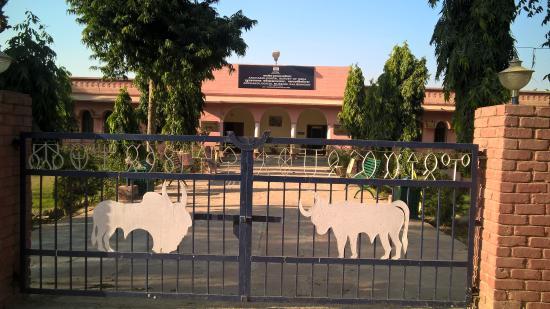 Hanumangarh Photo