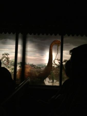Photo of Other Great Outdoors Disneyland Railroad at 1313 S Harbor Blvd, Anaheim, CA 92802, United States