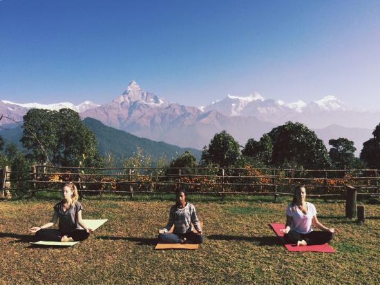Ask About Yoga: photo0.jpg